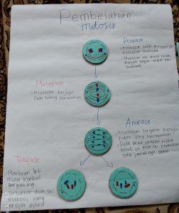Pembelahan Mitosis Kelompok 6 Kelas 9.7